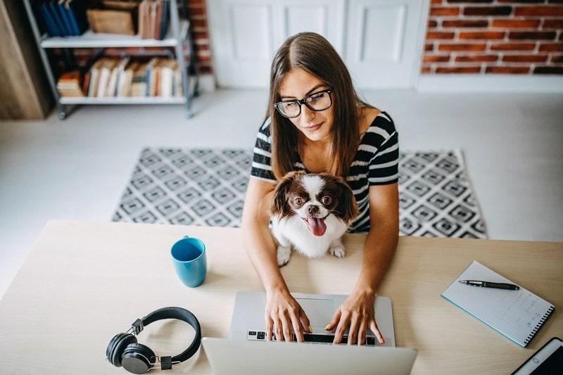 Home Office kann mühsam und anstrengend sein. Tipps für mehr Produktivität (inklusive Video-Botschaft von Mag. Peter Stark)